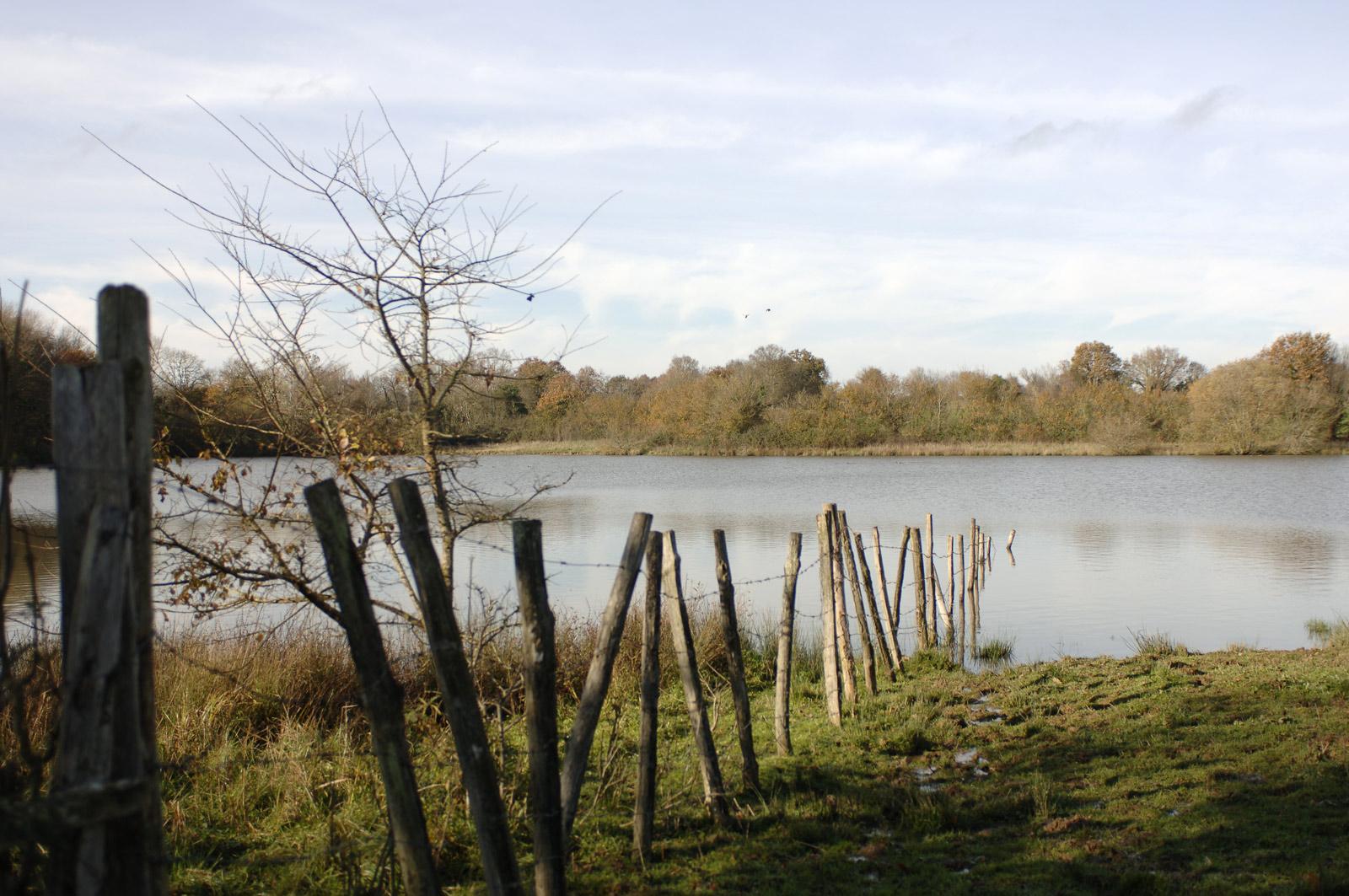 photo de lac - Iffcam