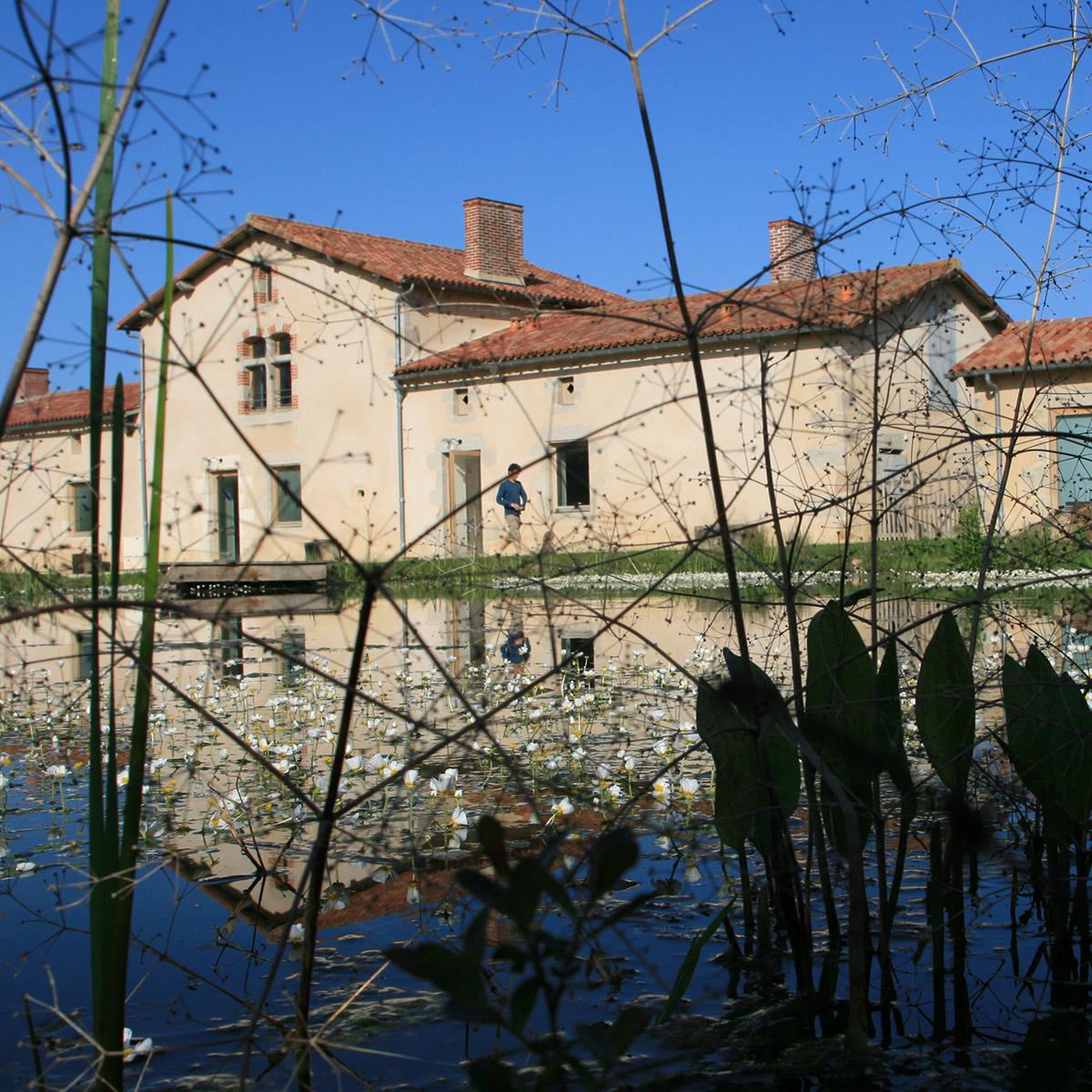 photo des locaux au bord de l'étang - Iffcam